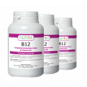 Vitamine B12 Méthylcobalamine à sucer - Lot de 3 flacons