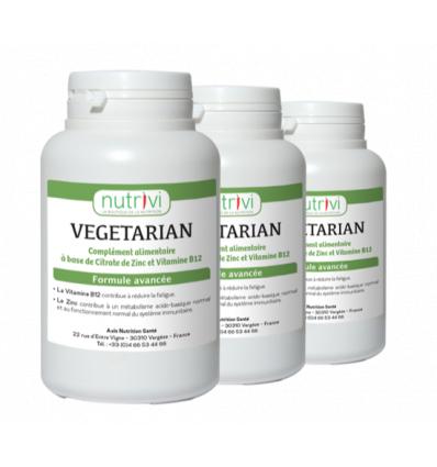 Vegetarian Zinc + vitamine B12 (120 gélules) lot de 3